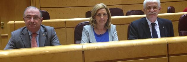 Los Senadores del PP muestran sus satisfacción por la licitación de las obras de la nueva sede judicial