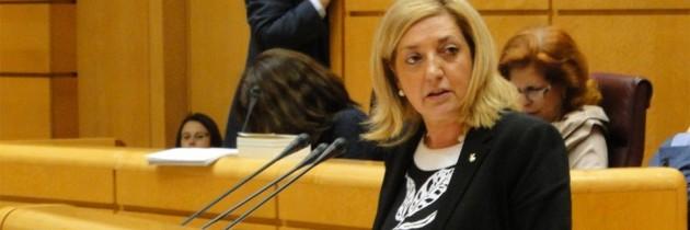 Paloma Sanz, la candidatura al Senado