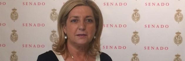 """Paloma Sanz: """"El Gobierno del PP ha logrado consolidar un Sistema Sanitario sostenible y viable"""""""
