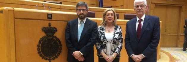 Paloma Sanz, nombrada presidenta de la Comisión de Suplicatorios del Senado