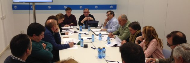 Los alcaldes y portavoces del PP en la zona de Fuentepelayo manifiestan su satisfacción por la pronta actuación de la Junta