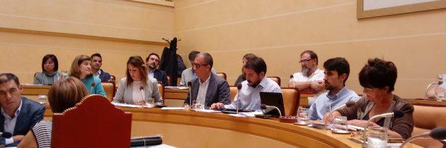 El PP en el Ayuntamiento propone la sustitución de los peldaños por una rampa para acceder al Centro de Recepción de Visitantes y la retirada de los contenedores de la plaza de la Artillería