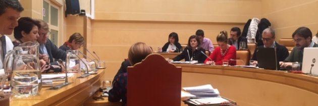 Clara Luquero encuentra en el vaivén de Ciudadanos la forma de tapar su incapacidad de gestión para Segovia