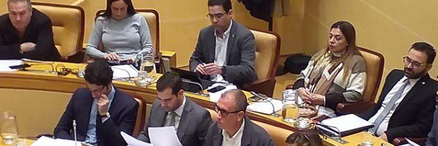 El PP municipal propone a la alcaldesa soluciones frente a su conformismo con los atropellos