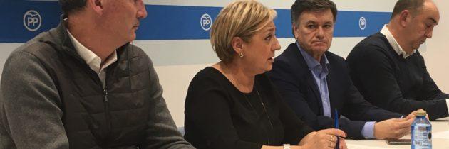 Paloma Sanz incluye a los alcaldes de El Espinar, Cantalejo, Riaza y Santa María y a los portavoces en Cuéllar y Ayllón en la Junta Directiva Provincial