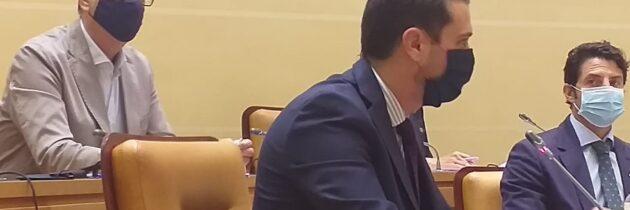 El PP municipal pide que se incluya a los colegios en el reparto de las mascarillas que una empresa anónima donó al Ayuntamiento