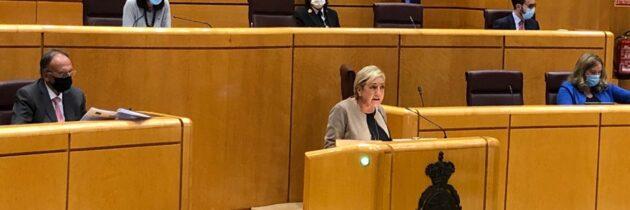 La senadora Paloma Sanz pide la aplicación de un IVA superreducido del 4% para mascarillas e hidrogeles, con el que todos los segovianos se verían beneficiados