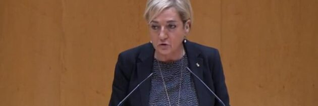 Paloma Sanz asegura que el Gobierno antepone la ideología y los intereses partidistas a los de los consumidores y usuarios