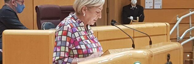 """Paloma Sanz: """"Sánchez pretende engañarnos porque la rebaja del IVA de la luz tiene trampa, no es para todos"""""""